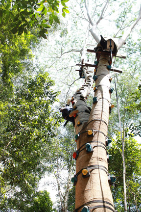 Penang Escape Theme Park Go Ape